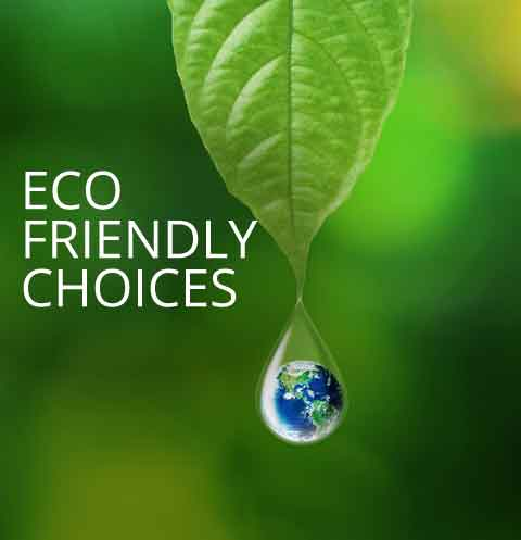 Eco Friendly Choices